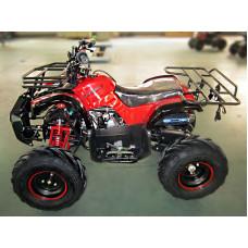 VIPER ATV110